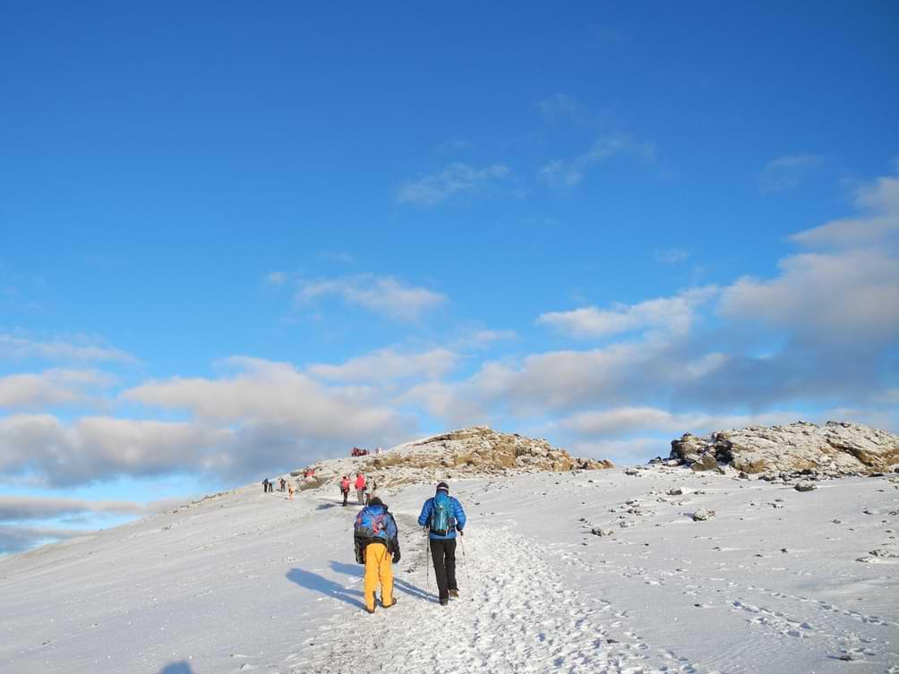 Pešaćenje ka vrhu Kilimanjara