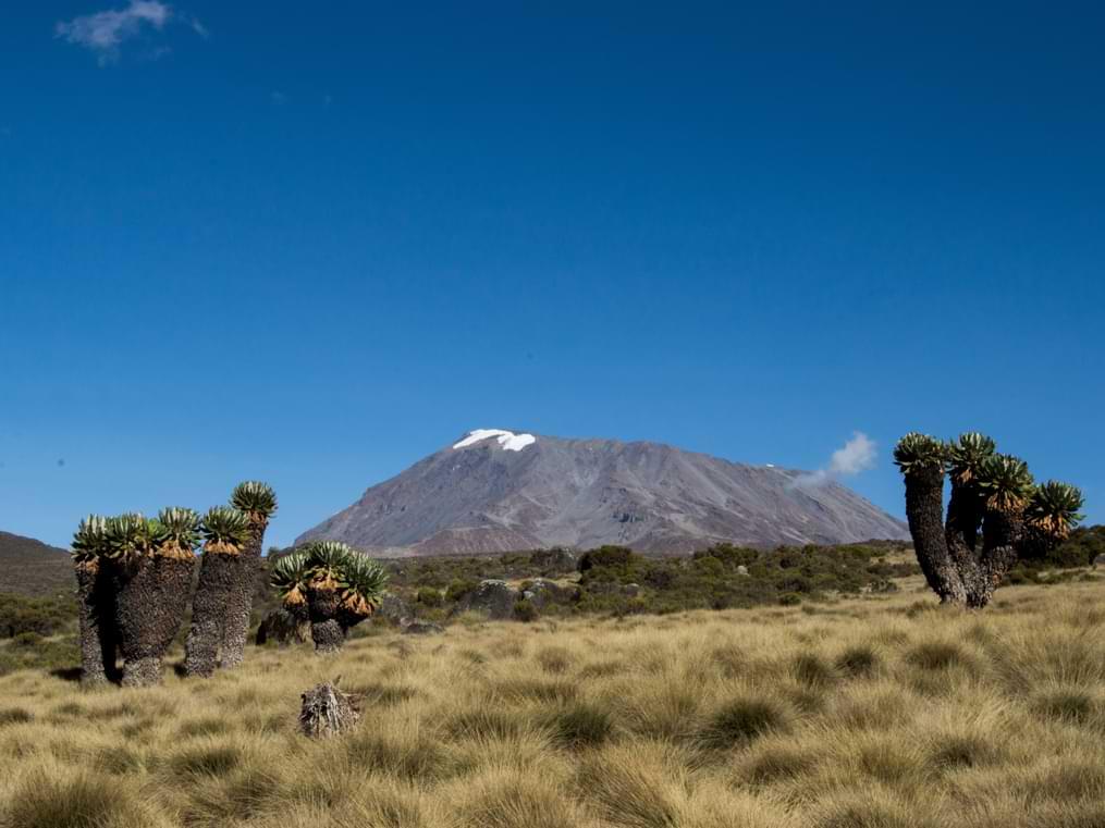 Šta vas čeka na Kilimanjaru (5895m)